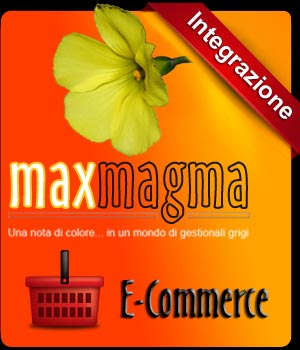 maxmagma_e-commerce